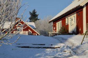 vinterträdgård2